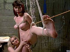 Brunette girl gets tied up and whipped by two blonde chicks. After that this brunette gets toyed in both holes at the same time.