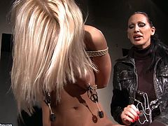 Tied up blondie NIKKY THORNE gets her nipples treated with metal stuff