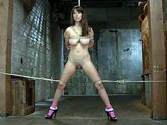 What a hardcore BDSM porn video this is! This slutty sex slave Nina gets bondages and her master gears her tits and slaps her ass.