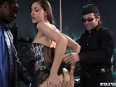 Sexy brunette Sasha Grey is having fun with a black dude in a basement. The guy pets the hottie and then makes her suck his BBC before he pokes it in her tight butt.