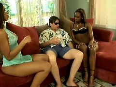 Two curvy black prostitutes in seducing lingerie play dirty sex games with a kinky white dude. They strip in front of him before one of them welcomes his sturdy penis in his mouth, while another whore gives him face sitting in threesome sex orgy by Pornstar.