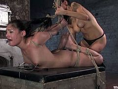 Cute brunette Jade Indica lets Princess Donna Dolore bind her in a basement. Then Dolore attaches wires to Jade's ass and smashes the hottie's cunt with a dildo.