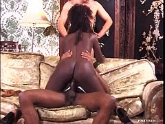 Laila sucks a dick and gets fucked by a Black guy. After that two White dudes join them. So, this ebony girl gets fucked three times in a row and gets her tits cum covered.