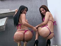 What's better then a big, round booty? Two big round asses, especially if they get oiled! Enjoy seeing our sluts and how they move, these bitches are not only smoking hot they have a lot of junk in the trunk! To make things even hotter we oiled them up and now they really deserve cock in their asses.