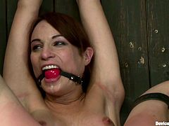 Beautiful dark-haired chick Amber Rayne lets some dude put her into fetters in a basement. The dude tortures the cutie and then smashes her butt and pussy with big toys.