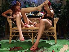 Two gorgeous brunette chicks lick each others feet lying on a bench. Then they also toy each other with a strap-on.