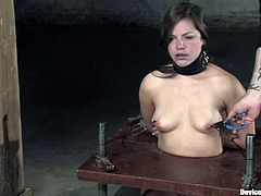 Tied up brunette chick gets her tongue tortured and