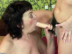 Sex-starved granny gets her fat snatch drilled hard by her horny lesbian friend with strapon in hot old vs young sex scene. Press play and enjoy the action!