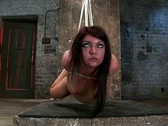 This sizzling and playful siren Cassandra Nix is being suspended and tortured so fucking hard! She is such a horny sex slave!