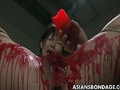There is something quite beautiful about seeing a totally defenceless babe with her arms lashed tightly to her body in true Japanese bondage style. With nowhere to run she takes her punishment like a good girl.The hot crimson wax drips down over her beautiful body,If you love hot wax torture then this is a must see, Japanese bondage at its best!