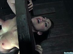 Cute brunette Princess Donna Dolore is getting naughty with Mark Davis in a basement. Mark binds and torments Donna, then attaches clothespegs to her pussy, fingers it and makes the hottie suck his dick.