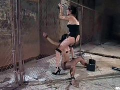 Cute brunette Leah gets bound and tortured by Princess Donna Dolore in a basement. Donna attaches wires to Leah's tits and then pulls the hottie by the beef curtains.