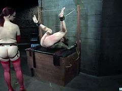 Claire Adams is having fun with bald dude Patrick Andraste in the basement. She ties him up and fists his butt and then humiliates the guy and fucks him hard with a strapon.