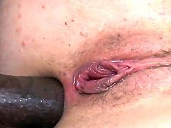 Petite and small titted babe Jodi Taylor get overwhelmed by three massive fat and black sausages who seek out every hole she has.