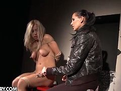 Bdsm session with nikky thorne