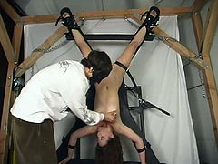 This slender and smoking hot babe Andi is being slaved and tortured. Her master hogties her first and then suspends her upside down.