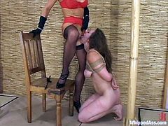 Cute brown-haired girl Ava lets her lesbian friend Kym Wilde tie her up and beat her. Then Kym plays with Ava's sweet cunt and enjoys the way the girl moans.
