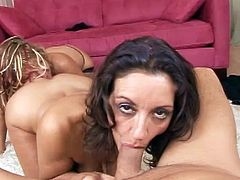 Nasty babes sucking cock together