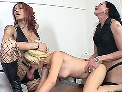 Horny tranny called Juliet and her friends are having fun with some lewd blonde bitch. They make the girl suck their wangs and then fuck her in missionary position by turns.