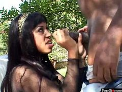 Filthy brunette hussy with giant tits and thick ass Mya Rose looks ravishing in her fishnet suit. She sucks BBC in a sloppy way and shakes her big ass getting her wet cunt fucked doggystyle.
