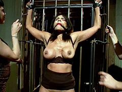 Brunette warden gets tied up and gagged by two girls. Anjanette gets her hands and boobs clothespinned. Later on she also licks pussies and gets fisted.