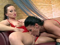 Beautiful MILFs in sexy red lingerie have an amazing lesbian sex. These hotties lick and toy each others pussies lying on a sofa.
