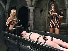 Lucy Lee and her pretty GF are having fun with some guy in a basement. They tie the man up and beat him and then pull him by the cock and destroy his asshole with a strapon.