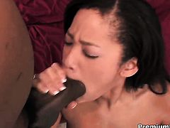 Jayla Starr cant stop fucking in steamy interracial porn action with hard dicked fuck buddy