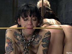 Cheyenne Jewel and Sparky Sin Claire get tied up and then whipped with a stick. After that they get their pussies toyed.