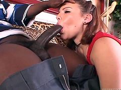 Nice brown-haired girl gives a blowjob to Black dude and fondles her smooth pussy. After that she gets fucked in cowgirl and doggystyle poses. Then she also gets facialed.