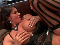 Eva Karera is a hot bodied big breasted MILF in sexy black nylon stockings she shows off her nice melons and gets her trimmed pussy banged balls deep in this hot scene. She loves hard sex.