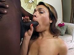 This delightful and slender chick Isabel Stanza is going to suck a huge black cock and ride it! Interracial sex is what this slut wants!