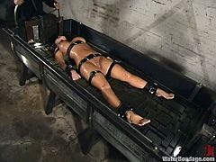 Kinky chick in fishnet bodysuit gets tied up and gagged by her mistress. Later on she gets her tits tortured with claws and pussy toyed with a vibrator.