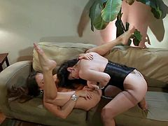 Michelle Lay and Rayveness are sexy dark haired lesbian women over 3 . Michelle Lay spreads her legs on the couch and gets her needy pussy licked and tit fucked. They love the fun!