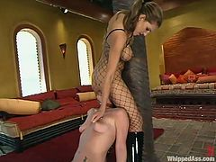 Bitch in fishnet is using some tools to fuck her slave