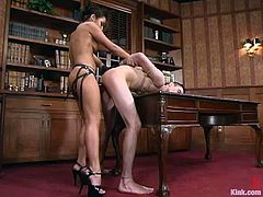 Sexy brunette Jasmine Byrne is having fun with a guy called Vince in the study. She binds and humiliates the man and then fucks his butt with a strapon from behind.