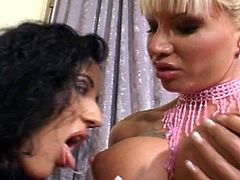 Check out these horny MILF sluts getting together to have some nasty lesbian action. They are using their fingers and share big double dildo for a nie orgasm!