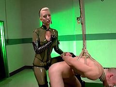Mistress Cherry wears her sexy latex costume. She's a mean mistress, that doesn't tolerates bad boys such as David. Cherry wants to discipline his ass, so she tied and hanged him. The blonde inserted her strap on dildo deep in his anus and gave this dude one hell of an ass fucking. Did he learned his lesson?