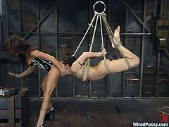 Hogtie suspension first and strapon fucking next
