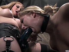 Adorable Jaelyn Fox gets tie up and gagged by Aiden Starr. Later Jaelyn gets her pussy lips clothespinned. After that she also gets toyed rough with a strap-on and a dildo.