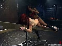 This desirable siren Jada Fire is that ebony bitch that gives some painslut to an amazing redhead angel Briney Masnon. Holly shit, what an insane lesbian BDSM!