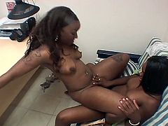 Pussy toying ebony lesbian sluts enjoy pounding each other with their dildos. THey are not shy to let us in their horny affairs on camera so prepare to get filthy with them.