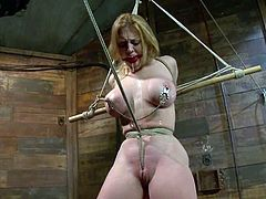 Darling the pretty blonde with big boobs gets tied up and clothespinned. After that the guy starts to toy her vagina deep.