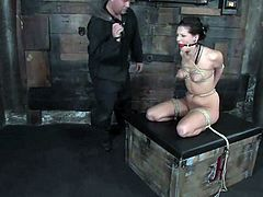 Moments of pleasant pain and humiliation for a sassy brunette chick Roxy Deville. This slutty bunny is so fucking perverted and pretty kinky to stand some pain!