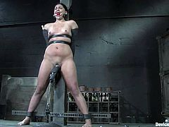 The machine got some power and this hottie enjoys its power, being tied up and blindfolded. Man, this BDSM scene is fucking life changing!