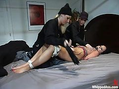 Hollie Stevens, Harmony and one more skank are playing BDSM games in a bedroom. The blondes tie the brunette up and whip her before pounding her mouth and pussy with a strapon.