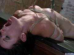 Veruca James has her arms bound to her chest with rope so she can't fight back when this man takes advantage of her. He opens her mouth and sticks his dick in it, making her deep throat it. She takes the whole cock into her mouth and then she's is flipped over the table and fucked.