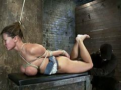 The beautiful and big boobed babe Trina Michaels will get her tits extremely tied up in this crazy bondage session.