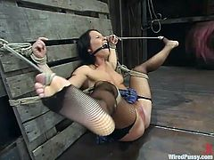 Katja Kassin binds hot brunette Princess Donna Dolore and attaches wires to her body. Then Katja fucks Donna's twat with a dildo and they both seem to enjoy it much.