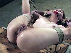 Slim brunette girl lies on a bondage device being tied up. Some guy toys her wet pussy and ass with the dildo and a vibrator.